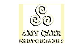 amycarr.com logo